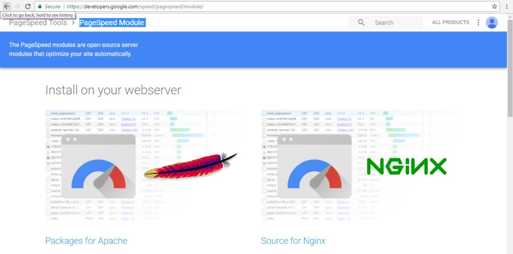 PageSpeed Module website